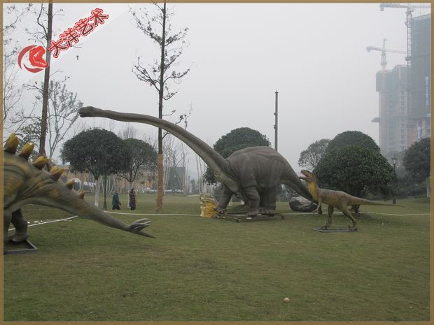 2011年11月雅安展览