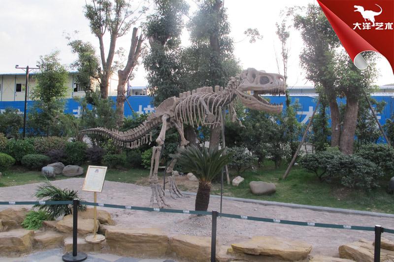 仿真恐龙骨架-霸王龙骨架