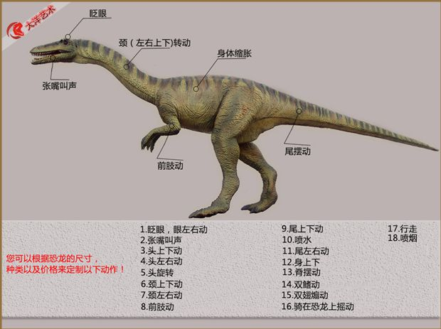 公园 公园恐龙 场内 展览 中国恐龙 ,,国外恐龙 国外